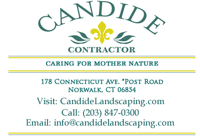 Candide Contractor Ad for Website